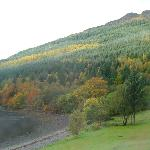 The autumn colours in the hotel grounds, around the Loch.