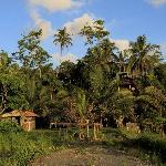 Rear View of villa at Sunset