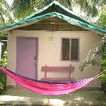 Front view of the room with beautiful HAMMOCK
