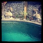 Salt Water Swimming pool for Perfumed Garden