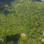 View of the Rain Forest around Marea