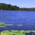 beautiful canoeing & kayaking on Farm & South Farm Lakes.ke.