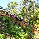 stairway from private dock to Diamond Willow cabin