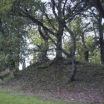 A view of the Etruscan mound on site.