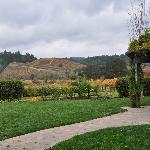 View from the open picnic area at Dutchers Crossing Winery