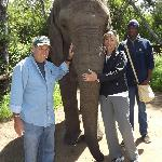 A visit to the Elephant Sancturay