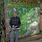 Monkeyland - worth a visit.