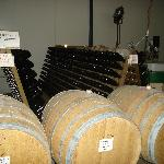 Barrels & racks of bottles you can see in our Cellar door