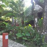 La vista desde la entrada del hostel