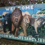 Octagon Wilderness Santuary