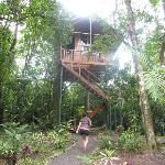 Our treehouse :)