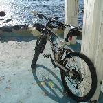 sorgeto la mia bici