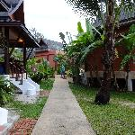 between the rooms/suites/bungalows
