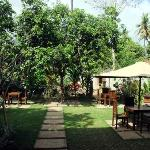 Bali Balance Cafe & Bistro