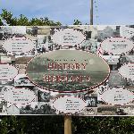 Hermanus history