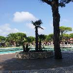Vista de la piscina, tiene bar