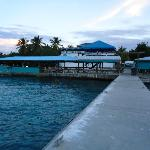 Dockside Bar - Virgin Gorda