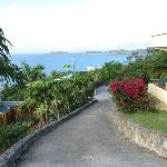 View from the top of the driveway at Villa Mirabella!