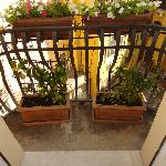 The flower boxes on the balcony