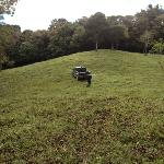 Areas verde de nuestro rancho