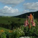 View of the surrounding hills and part of Linda's garden