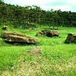 Gochang Dolmen Cluster