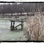 Der Teich ohne Wasser