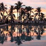 Palmiye Sunsett