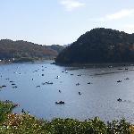 博物館明治村の「品川燈台」からの眺め