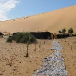 Entrance to desert camp