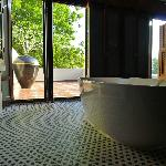 amazing bathroom with terreace