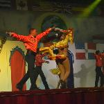show Dominican