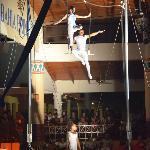 show...circus