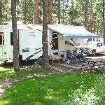 Spacious & shaded full hook-up RV sites