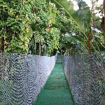 the pedestrian shortcut from our room to the main area, it included a suspension bridge!