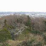 八菅山の展望台からはるか新宿の高層ビル、スカイツリー、横浜ランドマークタワーが望める。
