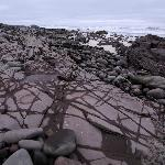 Rocks and tidal pools at low tide, a short walk from our room