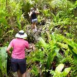 It's a 30 minute walk through the jungle and makatea