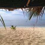 Beach life at Heilala - December 1st 2012
