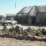 front of Mondjila