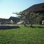 Back of Mondjila