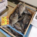 1階魚介販売