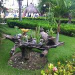 jardinería cerca de la piscina
