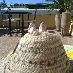 Les pieds au soleil sur la terrasse!