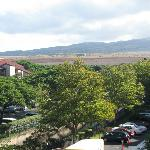 Looking inland from the lanai