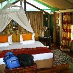 Shinde room