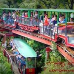 Driving Creek Railway and potteries 5 minutes drive