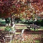autumn at totara barns