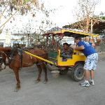 Only horse drawn carts allowed on island