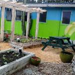 The Perma-Culture garden